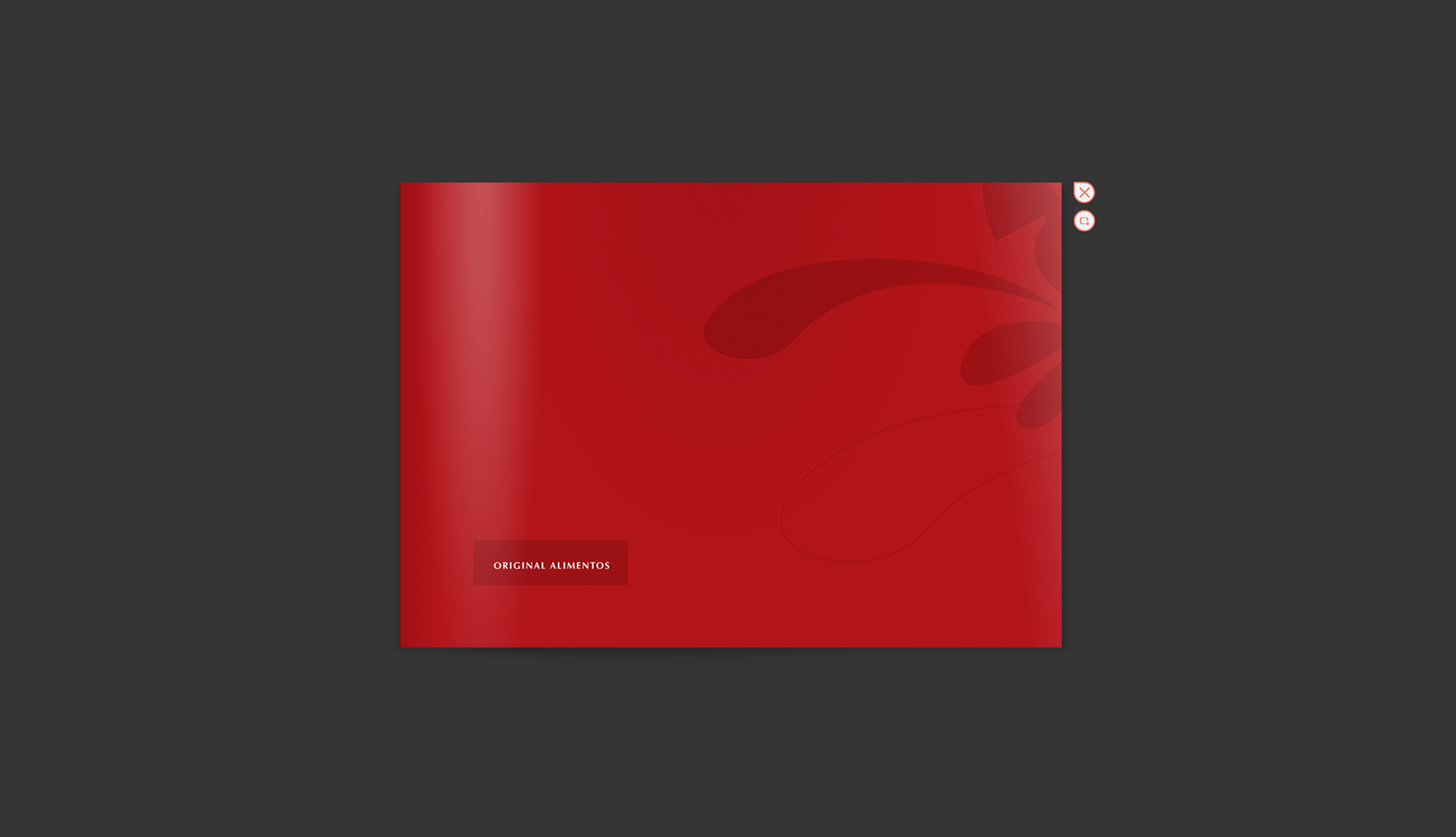 Manual-Original-13