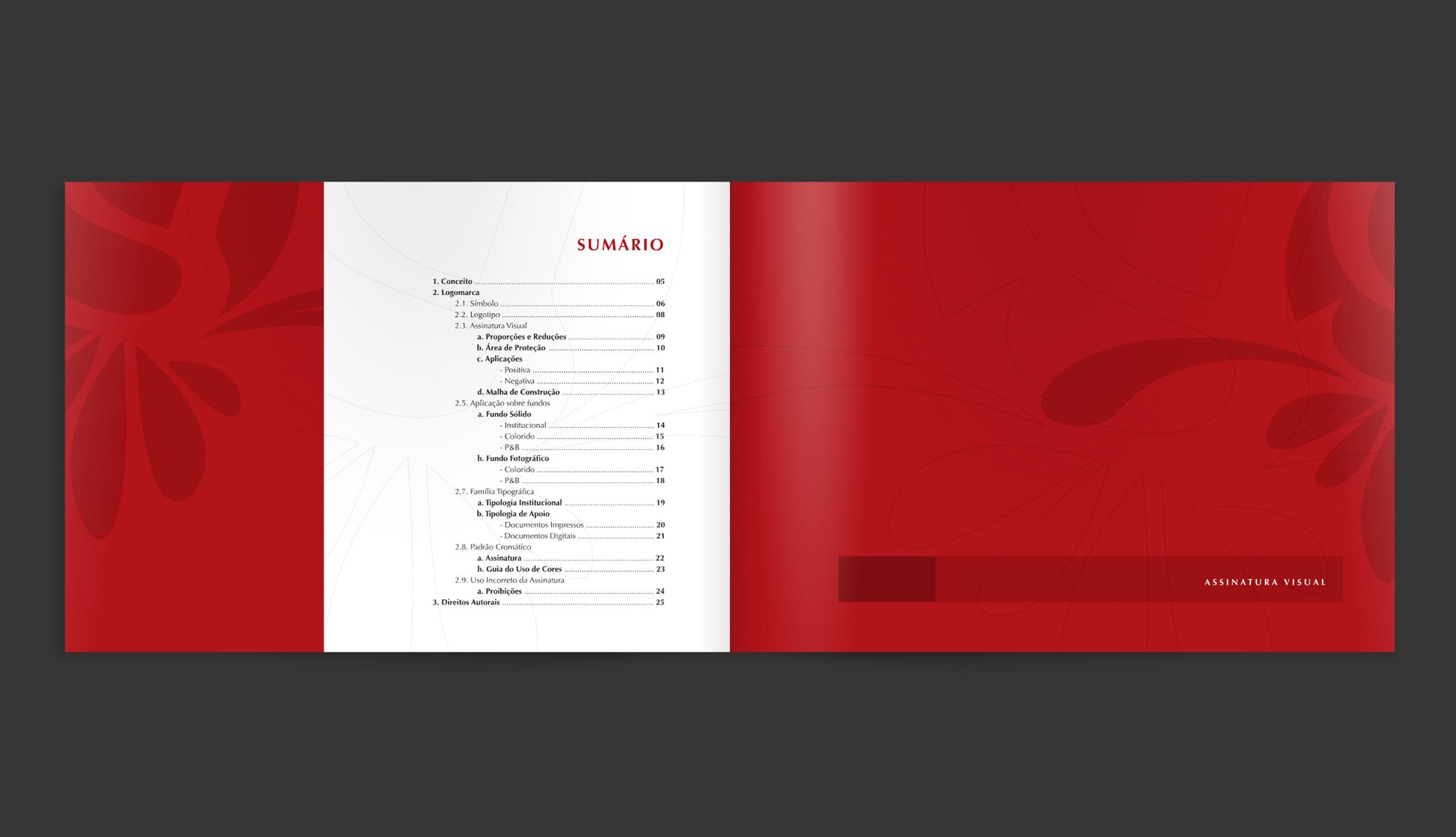 Manual-Original-2