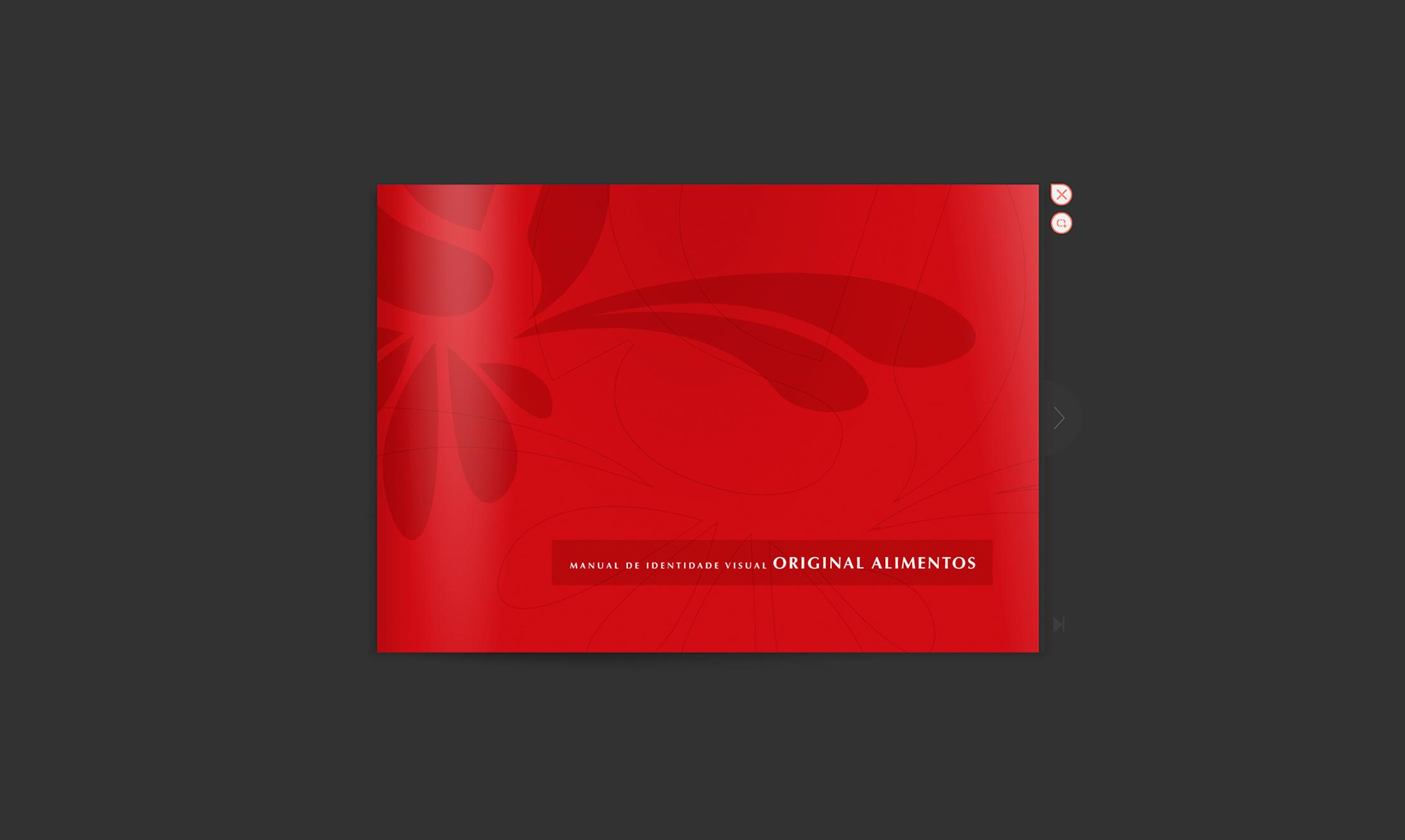 Manual-Original-1