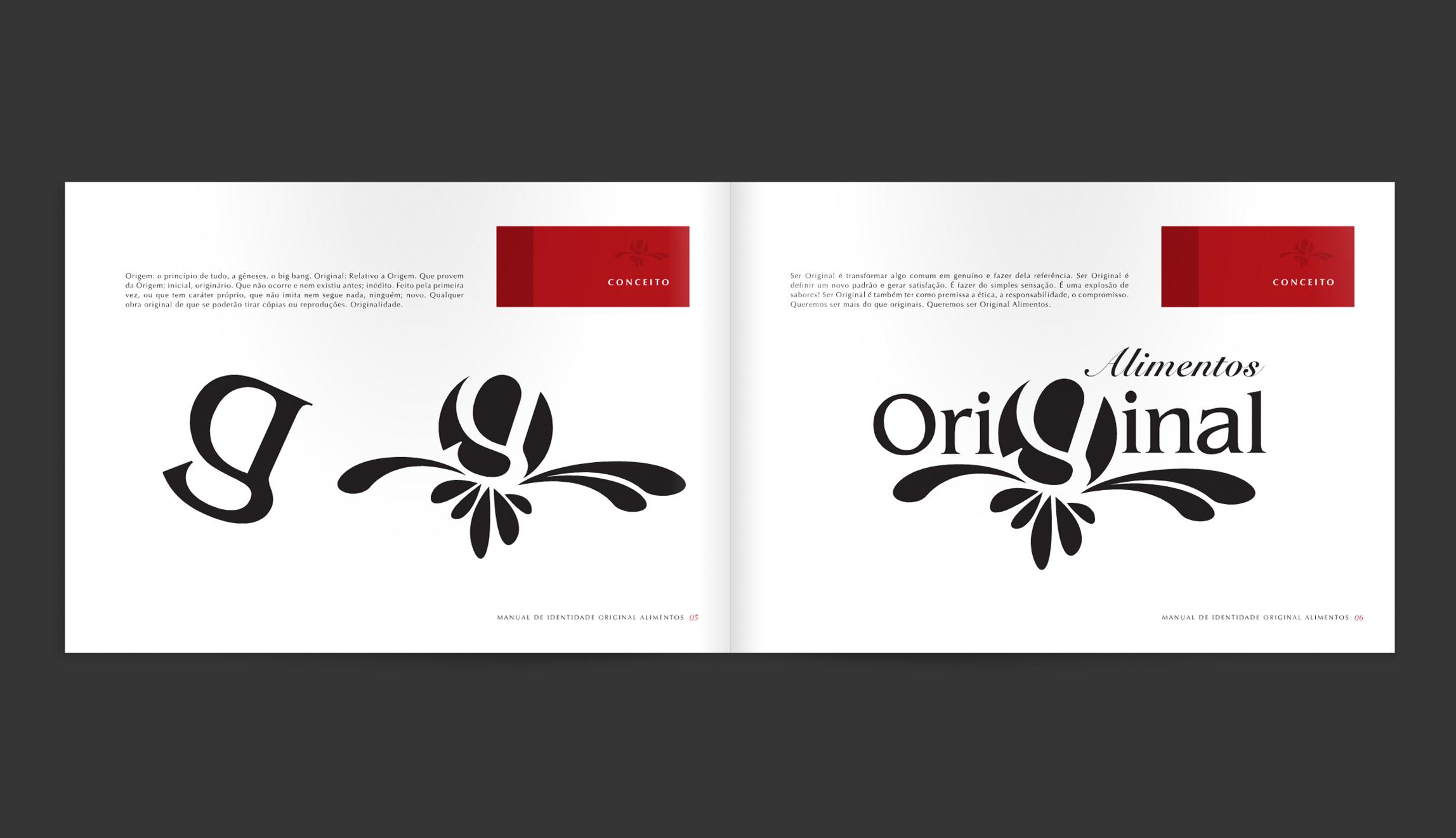 Manual-Original-3